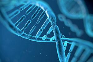 Взаємозв'язок генетики та онкології